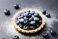 Blueberry tartlet, pie, tart with vanilla custard. Slate stone background. Copy space. Royalty Free Stock Photo
