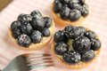 Blueberry tarts Royalty Free Stock Photography