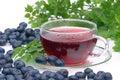 Blueberry tea Royalty Free Stock Photo