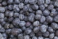 Blueberry texture background Royalty Free Stock Images