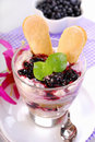 Blueberry tiramisu dessert in glass delicious with fresh fruits and mascarpone cheese Stock Photos