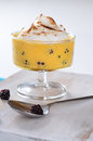 Blueberry Zabaglione Royalty Free Stock Photos