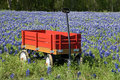 Bluebonnets and Red Wagon Royalty Free Stock Photo