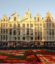 Blumen teppich festival grand place brüssels belgien Stockfotografie