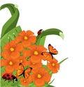 Blumenränder Stockfoto