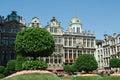 Blumenschau bei grand place in brüssel Lizenzfreie Stockfotos