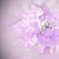 Blur background with flowers soft lilac Stock Photo