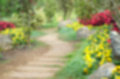 Blur background and pathway in the park garden Royalty Free Stock Photo