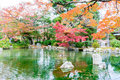 Blurred- Colorful of autumn leaves with reflection in the pond Royalty Free Stock Photo