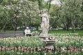 Blurred image of unrecognizable elderly man, pensioner, lonely resting in blooming spring park. Selective focus. Concept Royalty Free Stock Photo