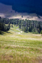 Blurred mountain pathway lensbaby shot italy Royalty Free Stock Photo