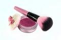 Blush brush Royalty Free Stock Photo