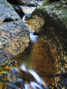 Bm mt wils waterfall vert blue mountains track fresh water stream in the rocky sandstone creek yellow and green moss Stock Images