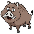Boar vector illustration of cartoon Royalty Free Stock Image