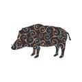 Boar wildlife color silhouette animal