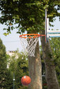 Board of the basket with natural green background Stock Image