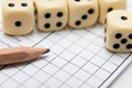 Board game dices on score of the social of yatzy Royalty Free Stock Photo
