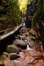 A Boardwalk Leads Hikers into the Flume Gorge, New Hampshire Royalty Free Stock Photo