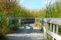 Boardwalk in the Marsh Royalty Free Stock Images