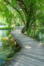Boardwalk over freshwater pools at Krka national park Royalty Free Stock Photo