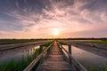 Boardwalk over salt marsh at sunset Royalty Free Stock Photo