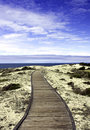 Boardwalk over sand dunes with blue sky Royalty Free Stock Photo