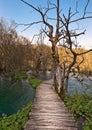 Boardwalk over turquoise lake Royalty Free Stock Image