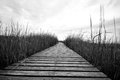 Boardwalk seaside in black and white Royalty Free Stock Photos