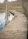 Boardwalk into a swamp Royalty Free Stock Photo