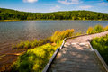 A boardwalk trail encircling spruce knob lake west virginia in monongahela national forest Royalty Free Stock Photo