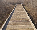 Boardwalk vanishing point in wetlands comes to an end reeds of cosumnes river preserve california winter light Stock Images