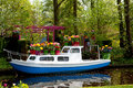 Boat covered with Dutch tulip flowers Royalty Free Stock Photo