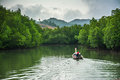 Boat fishing with mangrove forest Royalty Free Stock Photo