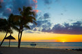 Boat and palm trees at sunset on the indian ocean coast of mauri beach with black stones mauritius Stock Images