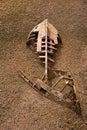 Boat ship skeleton half buried in sand