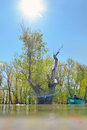 Boat in summer on danube river fisherman with Royalty Free Stock Photos