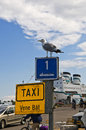 Boat taxi sign in helsinki a water with a seagull sitting on it the says english and finnish vene and swedish bat Royalty Free Stock Images