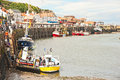 Boat trips in whitby for holiday makers starting harbor on east coast of england Royalty Free Stock Photo