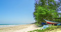 Boat under some trees near beach a fishing Royalty Free Stock Photo