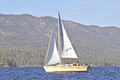Afternoon Sailing Royalty Free Stock Photo