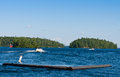 Boats on a blue lake boating among the islands in muskoka ontario Royalty Free Stock Images