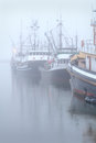 Boats at dock fog steveston dense surrounds seine tied to the in harbor near vancouver british columbia canada Royalty Free Stock Image