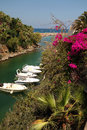 Boats moored in sissi bay with blooming bougainvillea flowers the foreground crete greece Stock Photography