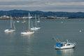Boats moored at tauranga harbor in new zealand Royalty Free Stock Photography