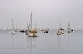 Boats and yachts moored in a foggy atmosphere Royalty Free Stock Image