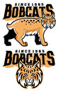 Bobcat mascot vector of head comes separated Royalty Free Stock Photos
