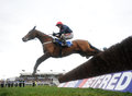 Bobs worth wins cheltenham seen here jumping last nd circuit Stock Photography