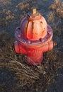 Boca de riego de fuego rojo vieja Imágenes de archivo libres de regalías