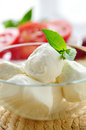 Bocconcini cheese Royalty Free Stock Photography