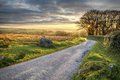 Bodmin moor a country lane leading through in cornwall Stock Images